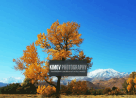photography.kimov.me