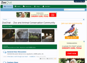 photos.zoochat.com