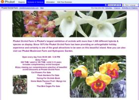 phuketorchids.com