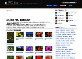 pic-lia.com