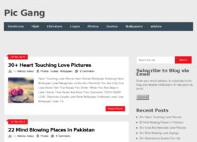 picgang.com
