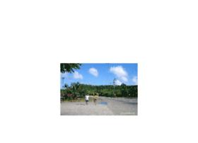 picnicsite.net