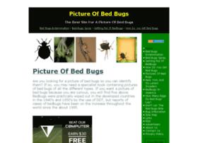 pictureofbedbugs.com