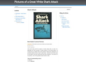 pictures-of-great-white-shark-attack.blogspot.com