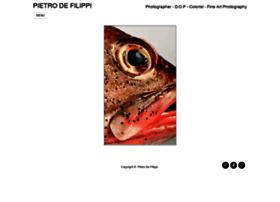 pietrodefilippi.it