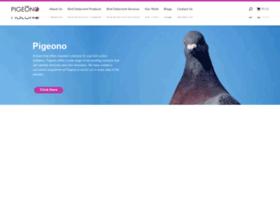 pigeono.com