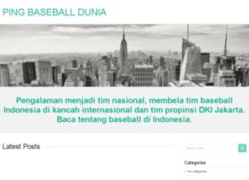 pingbaseball.com