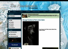 pinscheboules.chiens-de-france.com