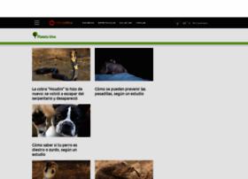 planetavivo.cienradios.com