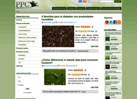 plantasparacurar.com