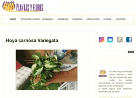 plantayflor.blogspot.com