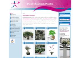 plantenbakkenplanten.nl