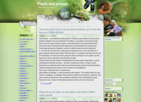 plantsandanimals-rick.blogspot.com