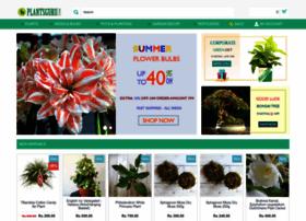 plantsguru.com