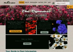 plantstogrow.com