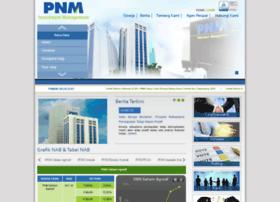 pnmim.com