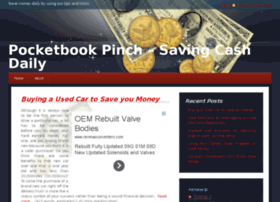 pocketbookpinch.com