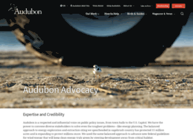 policy.audubon.org