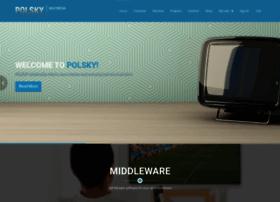 polsky-multimedia.com