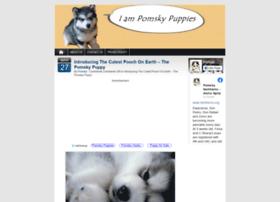 pomskypuppies.com