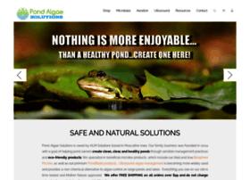 pondalgaesolutions.com