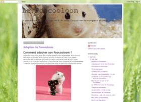 poocooloom.blogspot.fr