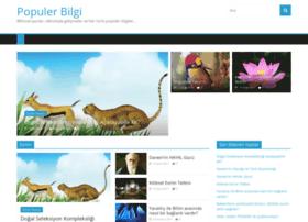 populerbilgi.com