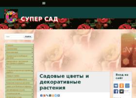 portegeclub.ru