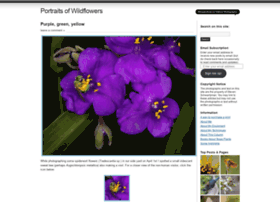 portraitsofwildflowers.wordpress.com