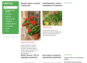 prbn.ru