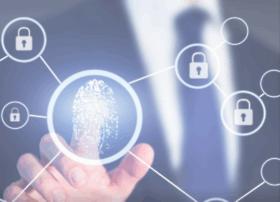 privacydatasystems.com