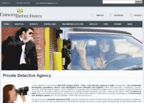 privatedetectiveagencydelhi.com