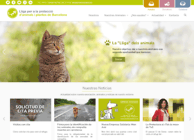 protectorabcn.es