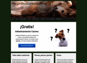 proyectomascota.com
