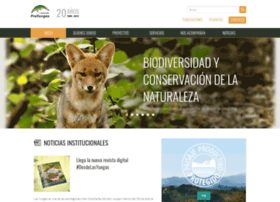 proyungas.org.ar