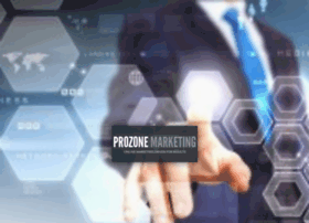 prozonemarketing.com