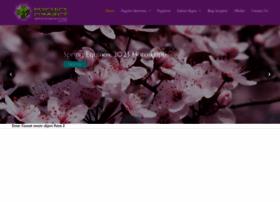 psychicsconnect.com