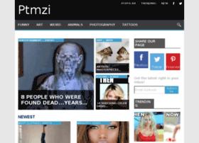 ptmzi.com