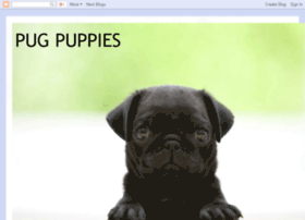 pug-puppies-pam.blogspot.com