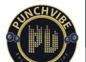 punchvibe.com
