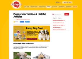 puppy.com.au