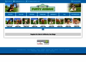 puppyavenue.com