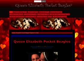 queensbeagle.com