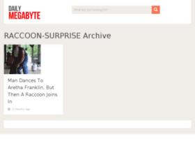 raccoon-surprise.dailymegabyte.com