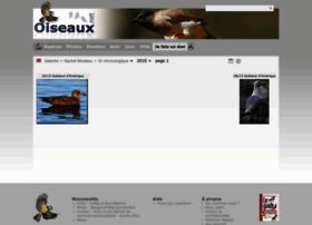 rachelita.oiseaux.net