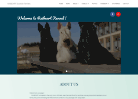 raibeartscotties.com