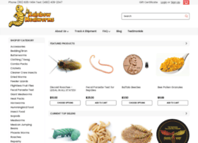 rainbowmealworms.net