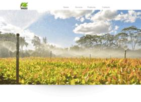 raizesecoforestal.com.py