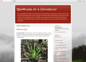 ramblingsofanaturalist.blogspot.co.uk
