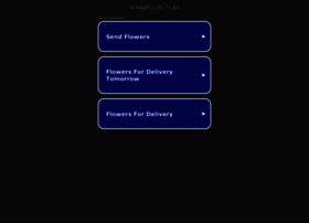 ramiplus.com
